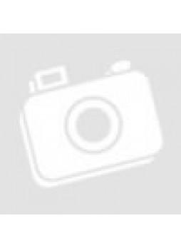 Sony E-Mount 55-210mm f4.5-6.3 OSS Lens for NEX Cameras  (SEL55210)(Sony Malaysia)